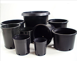 Black Nursery Containers